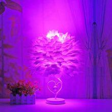 浪漫羽毛台灯,充满了梦幻般的美丽情调