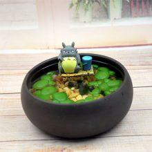 创意DIY小鱼缸浮萍摆件,可爱创意又好玩的绿植盆栽