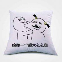 定制恶搞表情包抱枕,创意恶搞有趣的个性抱枕
