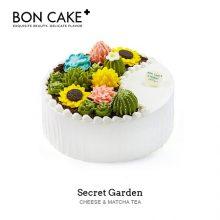 BON CAKE多肉植物逼真彩虹蛋糕,生日蛋糕也要送的有创意